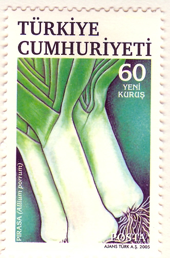 Allium%20porrumF.jpg