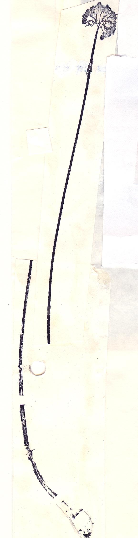 Allium%20scrobiculatum.jpg